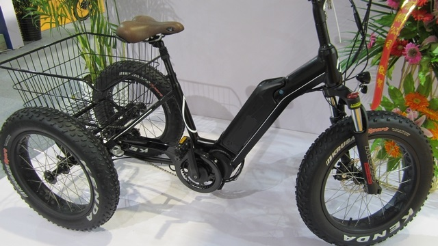Electric Fat Tire Tricycle